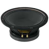 IMG StageLine SP 10/250PRO Subwoofer Speaker 10 inch 500W.max 8Ohm